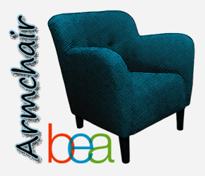 Armchair BEA Intros and Library Love