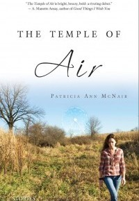 The Temple of Air  by Patricia AnnMcNair