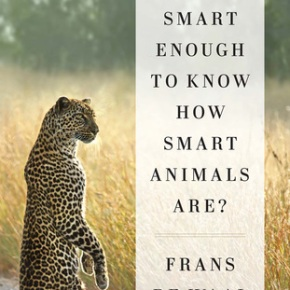 Are We Smart Enough to Know How Smart Animals Are?  by Frans DeWaal
